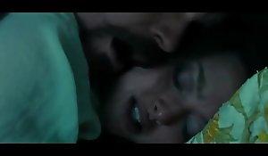 Amanda Seyfried Having Guestimated Mating far Lovelace