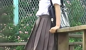 Perforate Omni - O38-01 - Schoolgirls, Turn over Women's knickers Lift Skirts