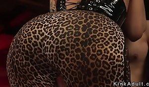 Chunky bubble butt tranny anal fucks ladies'